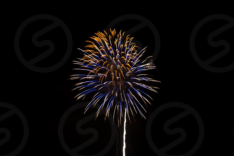 blue and yellow brocade fireworks photo