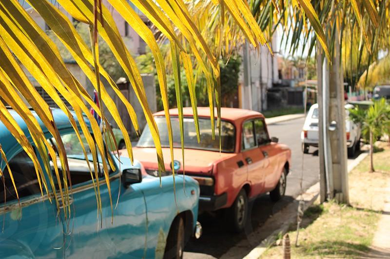 Cuba street old american cars sunlight photo