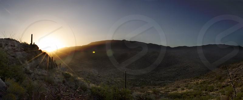 Sunrise over Saguaro photo