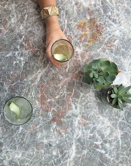 hand holding cocktail near green succulent plants on stone table photo