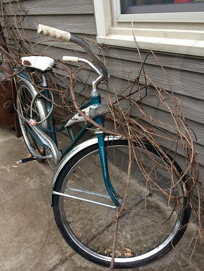 turquoise bicycle photo