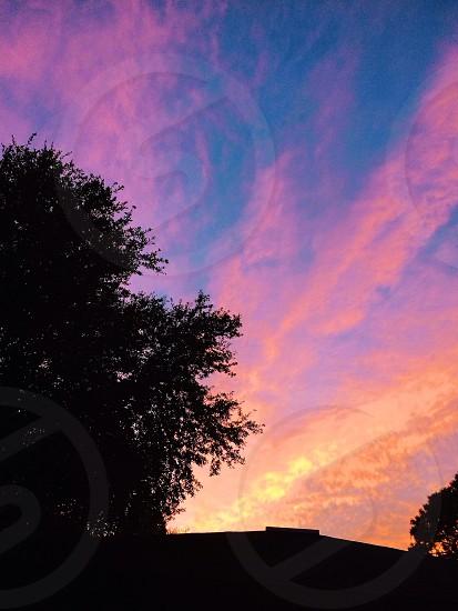 Florida sunset in Gainesville.  photo