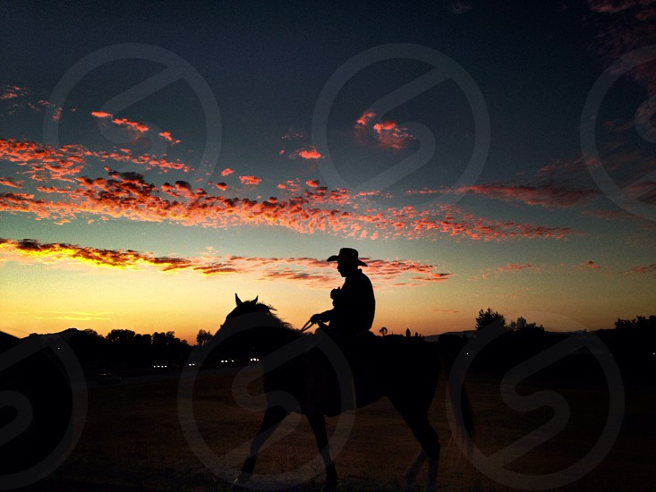man riding the horse silhouette  photo