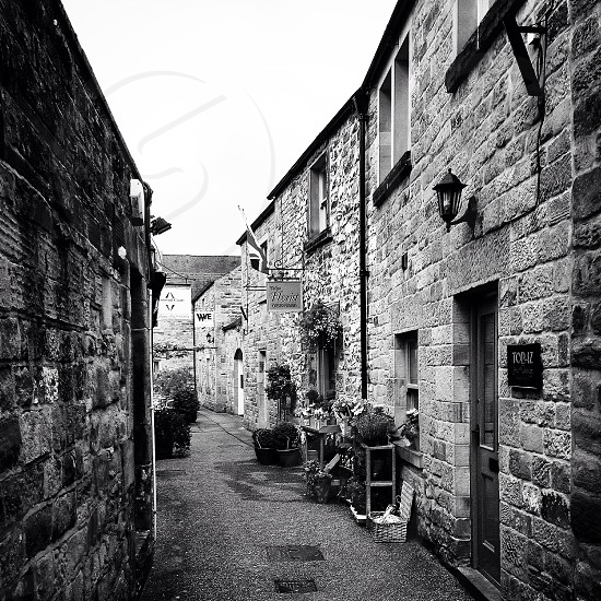 The back alleys of the Peak District ...  photo