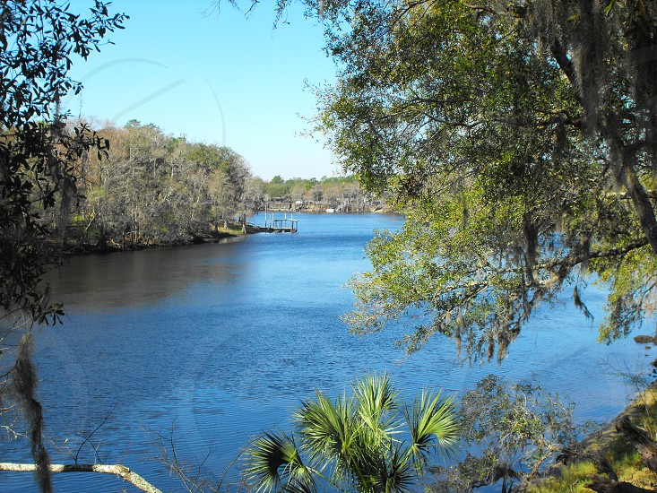Suwannee River at site of Fort Fanning FL. photo