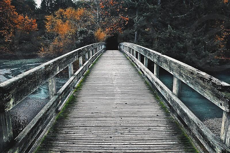 Fall Adventure photo
