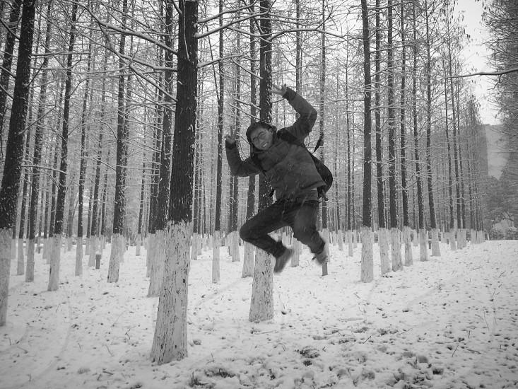 冬雪的欢跃 photo