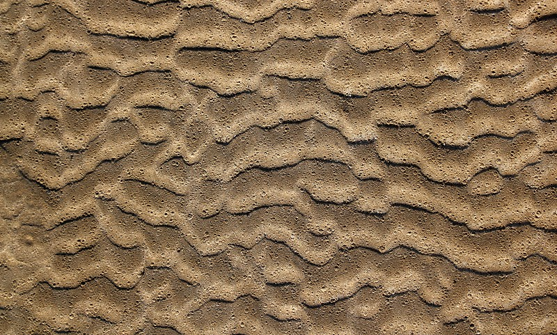 beach sand waves pattern texture brown wet color photo