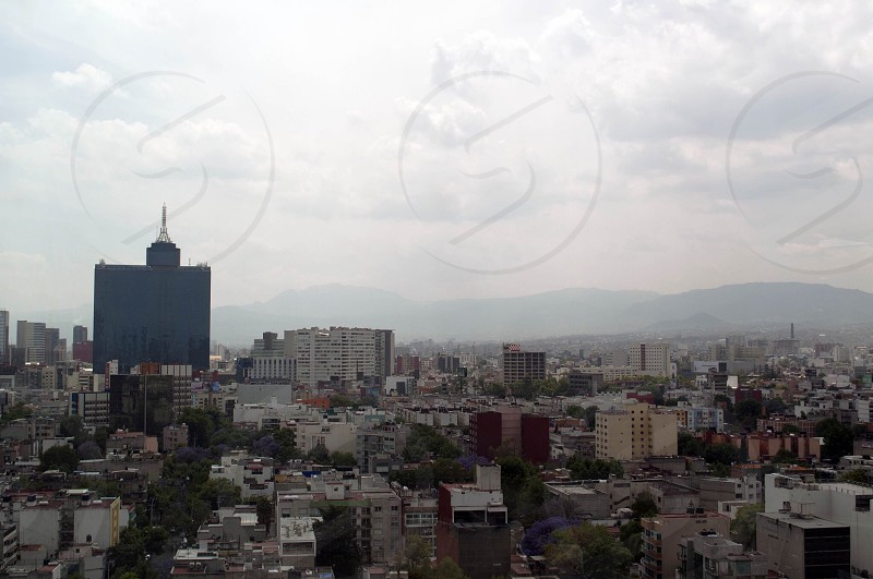 highrise photography of cityscape during daytime photo