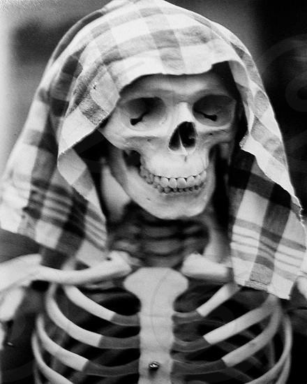 Skeleton skull bones photo