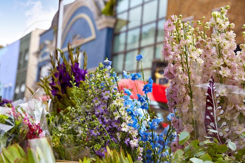 London Portobello road Market flowers in UK England photo