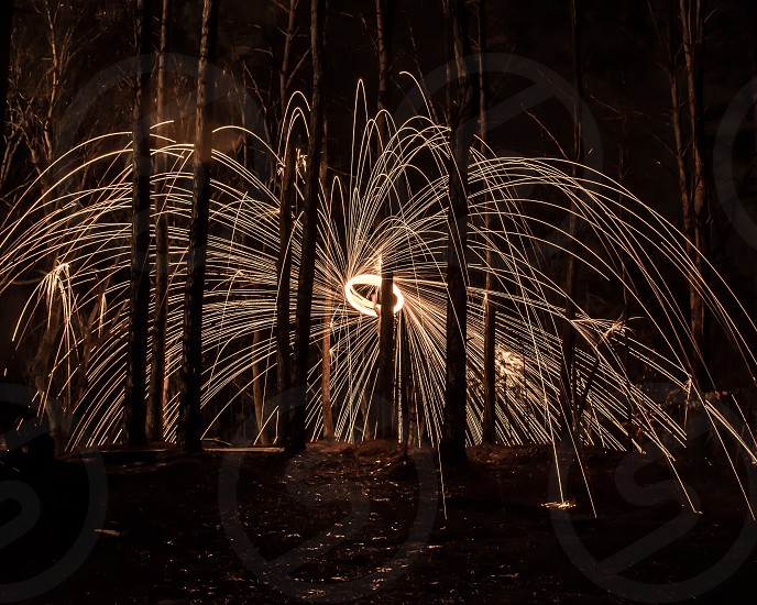 sparks in the woods photo