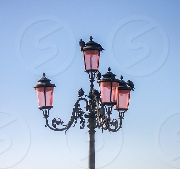 uplight street light under clear blue sky at daytime photo