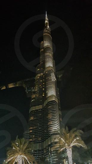 Burj Khalifa - night view - Dubai UAE photo