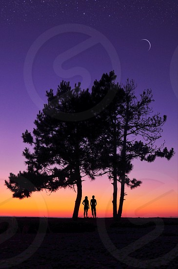 man and woman standing between the tree on nighttime photo