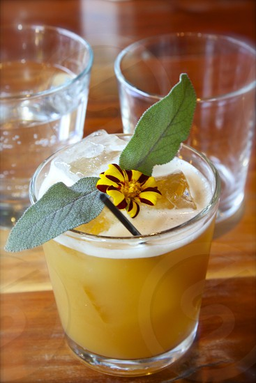 Cocktail with fresh sage leaves photo