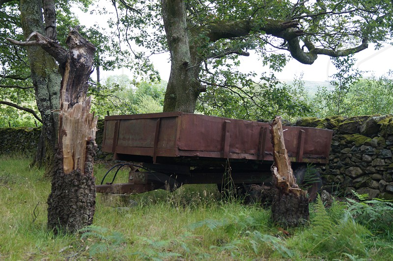 Trailer woods abandoned old rustic rusty wild photo