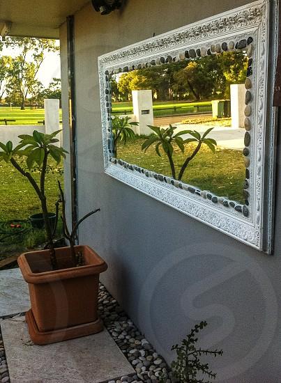 Garden Feature Wall Art photo
