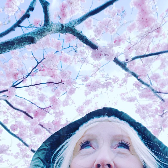 Spring blooming cherrytree nature face looking up Woman photo