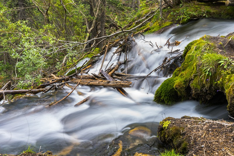 Long exposure of a stream on the Grassi Lakes Trail hike outside of Canmore Alberta Canada. photo