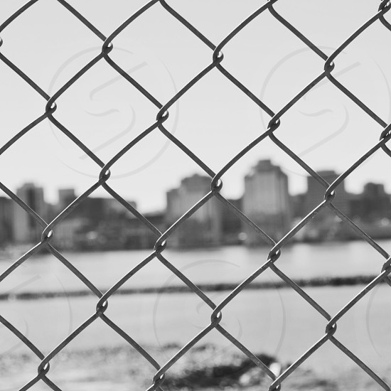 view of buildings over mesh wire photo