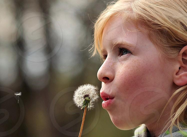1/1500th 85mm CALM CHILD DANDELION DAYDREAM F2 FLOWER NATURAL LIGHT OUTDOOR PEACEFUL PORTRAIT SPRING SUNLIGHT photo