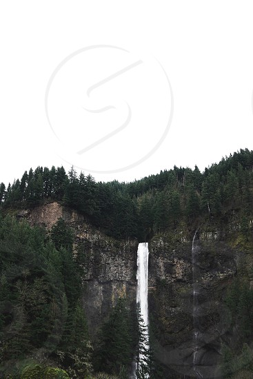 waterfall from cliff covered trees photo