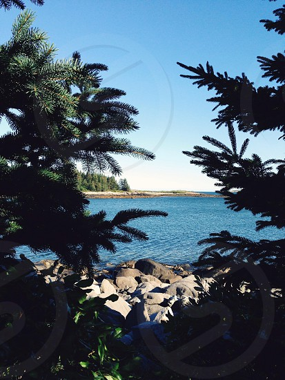 Hiking in Lane's Island Preserve Vinalhaven Maine photo
