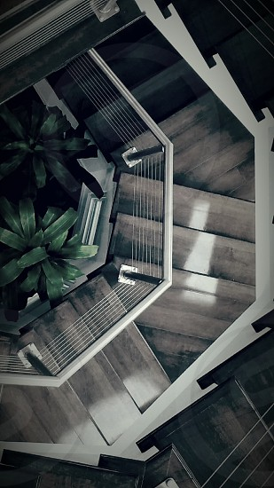Sprial staircase looking down to a plant photo