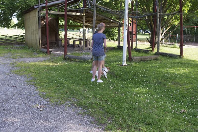 male girl conversation playground park path dog jack russel photo