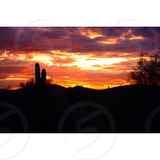 Sunset desert Arizona colorful landscape photo