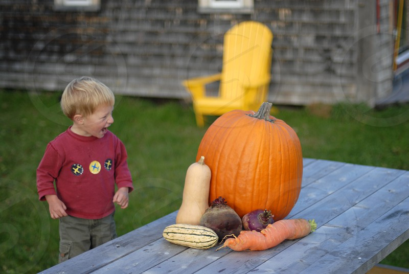A little boy laughing at a big vegetable harvest on a wooden table with a shed in the background. photo