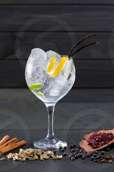 Gin tonic cocktail with ice vanilla lima and varied spices on black background photo