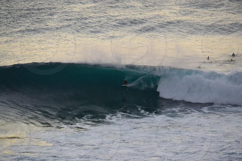 surfing Maui honoluabay  photo