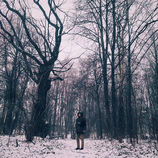 person in black hoodie standing on snow field near bare trees under cloudy sky during daytime photo