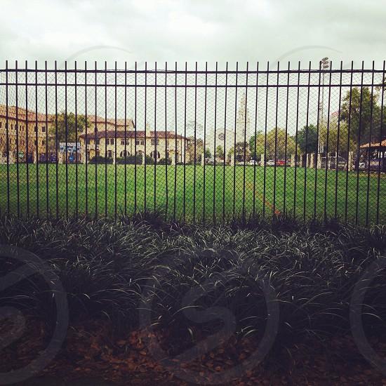 Rollins College  photo