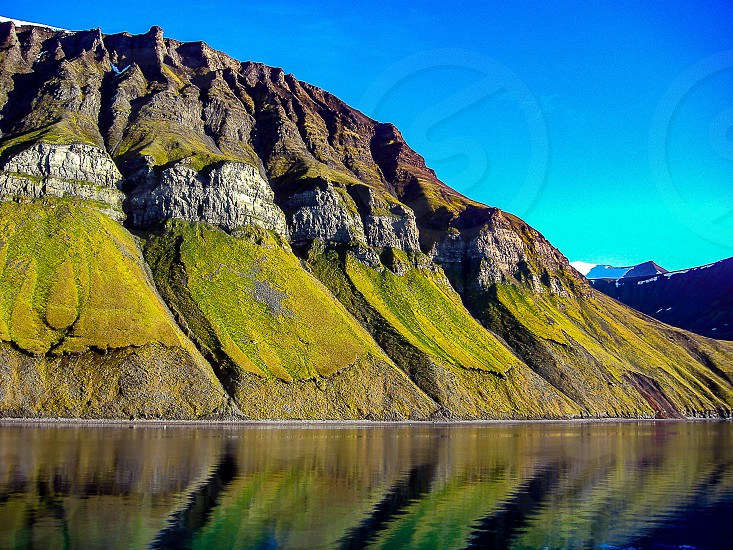 the only flora on this Island. Svalbard Spitsbergen photo
