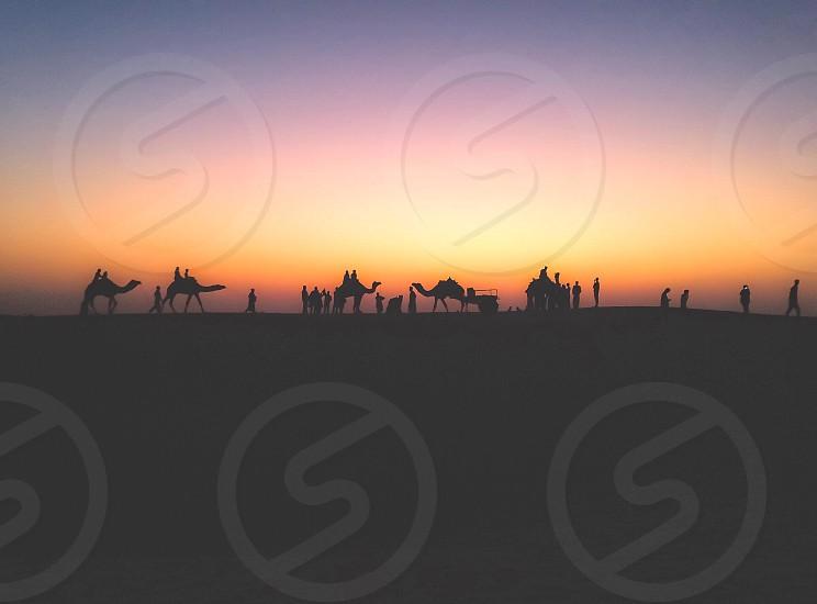İndia djaisalmer desert sunset photo