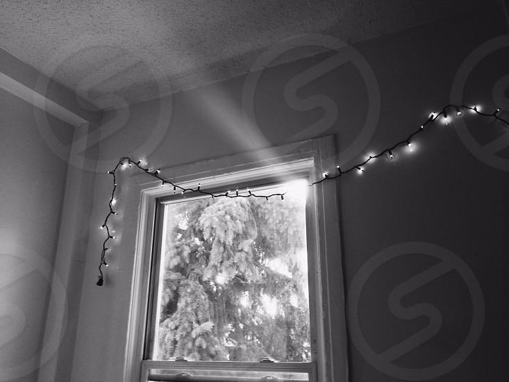 chrstimas lights over window frame photo