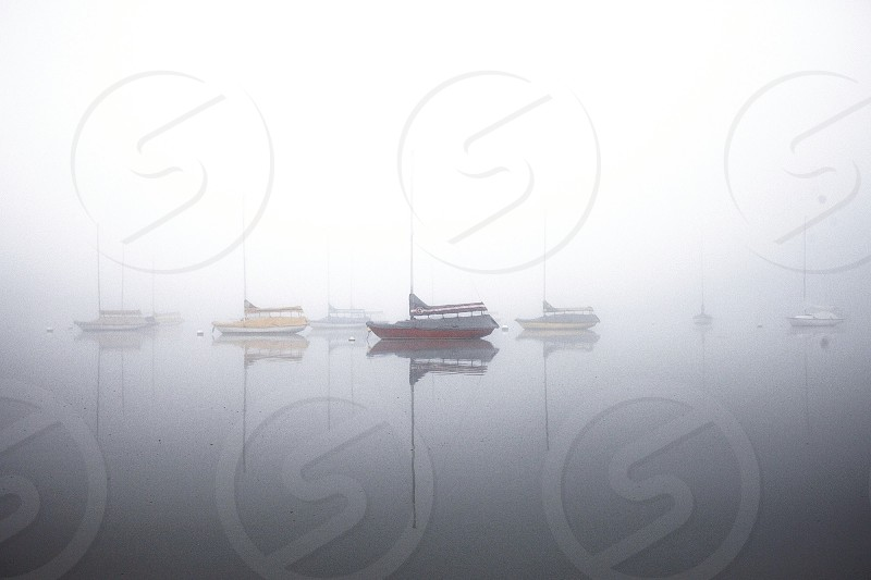 fog covered waters boats photo