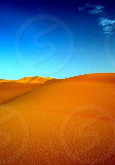 A bright orange dune photo
