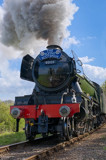 Flying Scotsman on the Bluebell Line photo