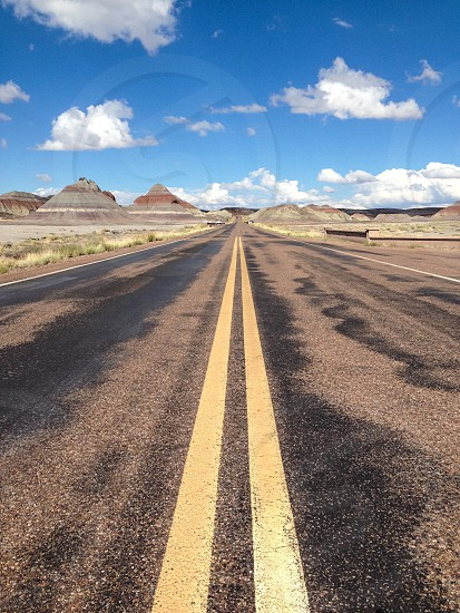 Open road USA Petriefied Forest photo