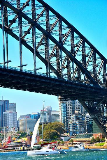 Sailing in Sydney photo