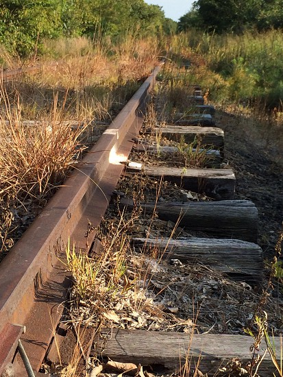 brown wooden train rail photo