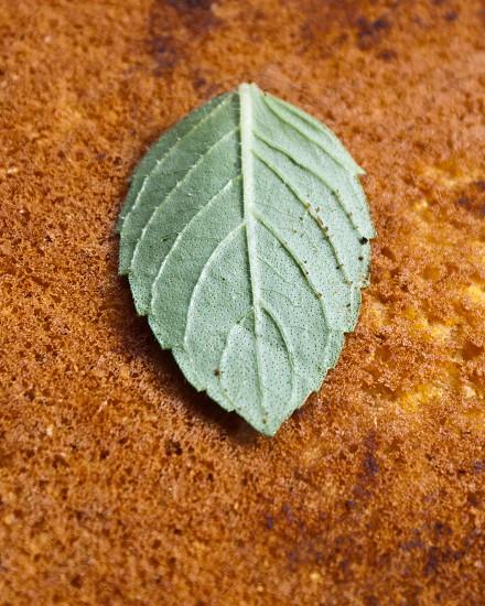 Herb leaf on cornbread photo
