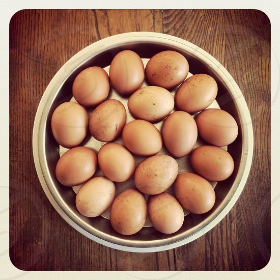 Bowl of eggs photo