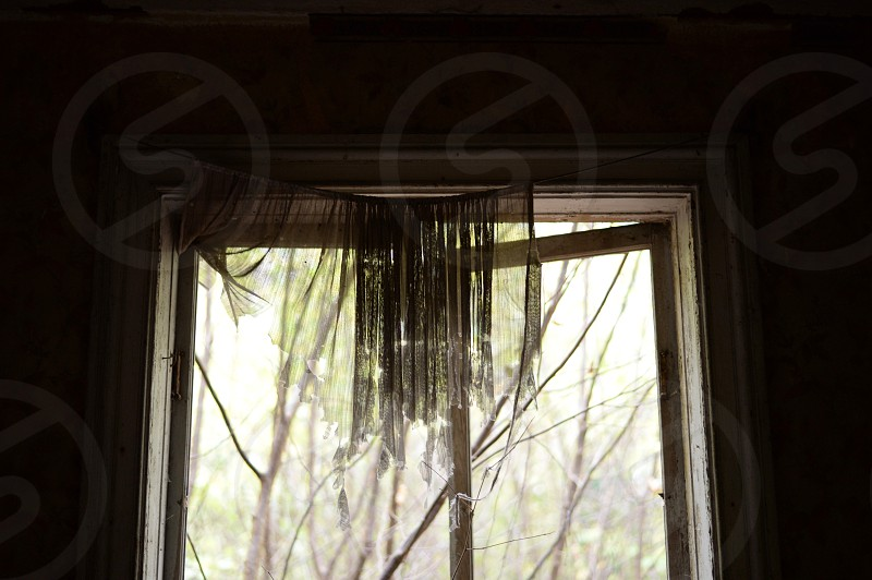 close up photo of tulle window curtain with open window photo