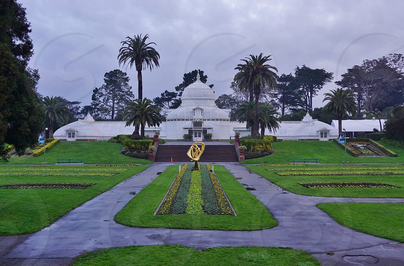 Golden Gate Park Arboretum - San Francisco CA photo