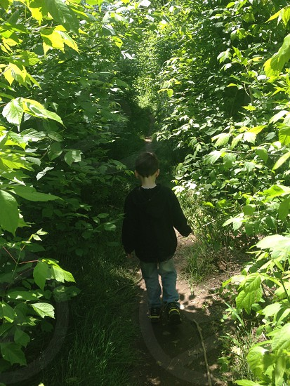 boy in black long sleeved shirt walking surrounded with green plant photo